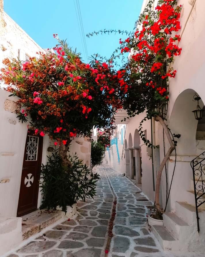 Parikia_Paros_Griechenland_Reisetipps-(2)