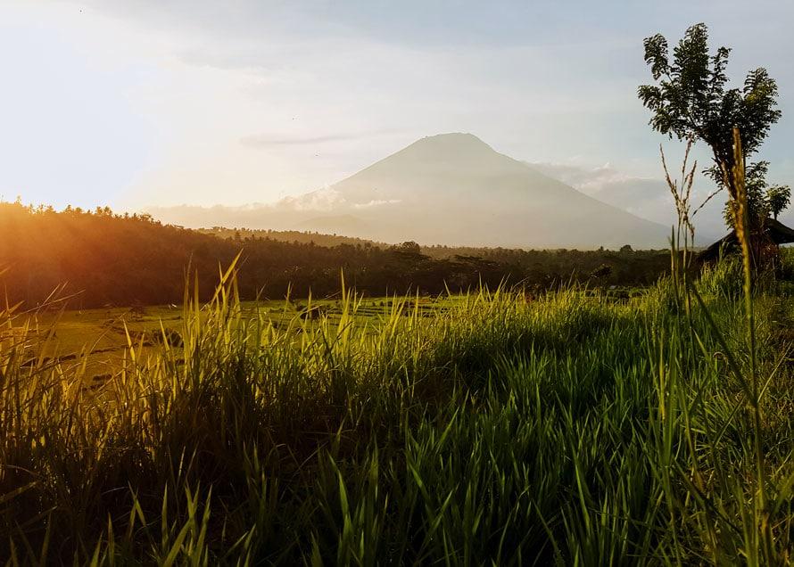 Die Reisterrassen im Hinterland von Amed auf Bali mit Blick auf den Mount Agung