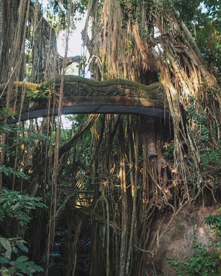 Sacred Monkey Forest: 11 Highlights rund um Ubud