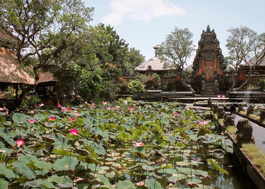 Ubud Waterpalace: 11 Highlights in Ubud entdecken