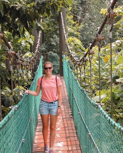 Eco Forest Kuala Lumpur: alle Reisetipps und Highlights