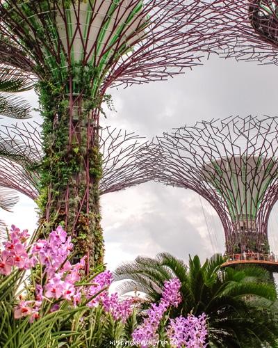 Gardens by the Bay Singapur Reisetipps Sehenswuerdigkeiten 2