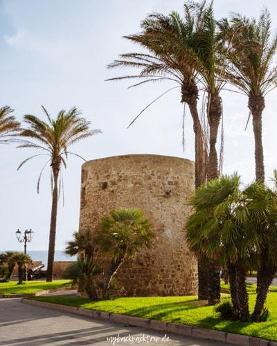 Alghero Roadtrip Sardinien 1