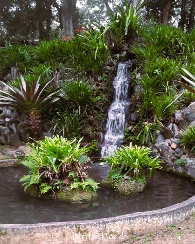 Botanischer Garten Rio de Janeiro 1