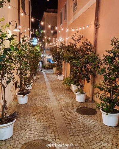Gasse bei Nacht mit Lichterketten über den Weg und kleinen Bäumen