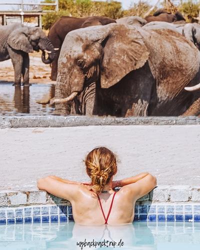 Botswana Elephant Sands Pools