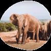 Header_Reiseziel_Afrika_mobile