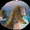 Header_Reiseziel_Indonesien_mobile