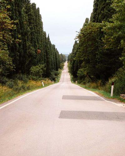 Viale dei Cipressi_Toskana_Italien